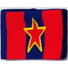 Wristband CSKA
